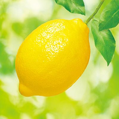 レモンのおはなし